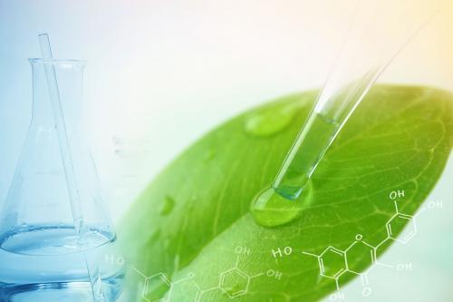 Analyse des plantes
