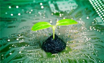La Phytothérapie, une technologie verte